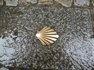 Camino shell in pavement, Burgos